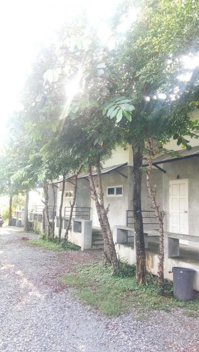 บ้านพร้อมเฟอร์นิเจอร์ 2500 สุพรรณบุรี สามชุก ย่านยาว